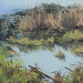 Pickerel Lake Beaver - Plein Air