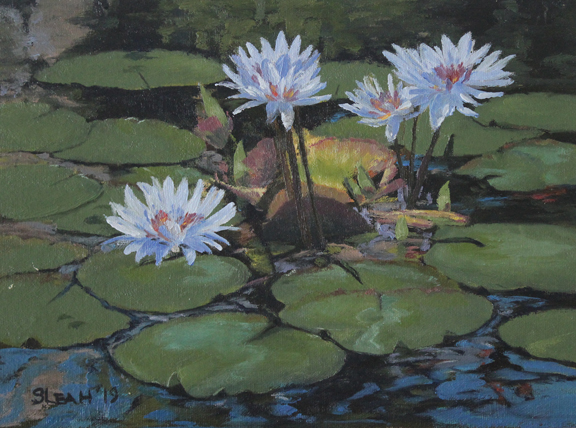 Pond Lotus_72dpi